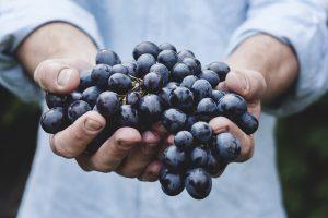 Mangiare correttamente la frutta