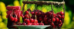 8 frutti della salute
