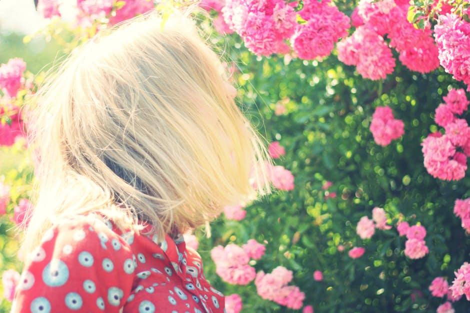 Curare i capelli secchi in modo naturale