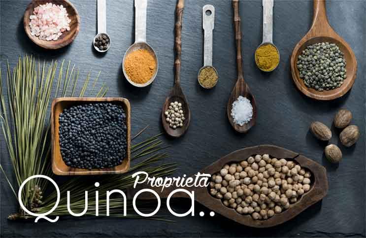 Quinoa - Proprietà e benefici