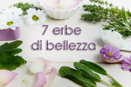 7 erbe di bellezza