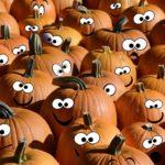 Decoriamo le zucche di Halloween