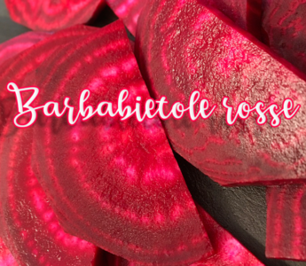 Barbabietole rosse