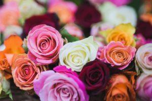 Dillo con un fiore